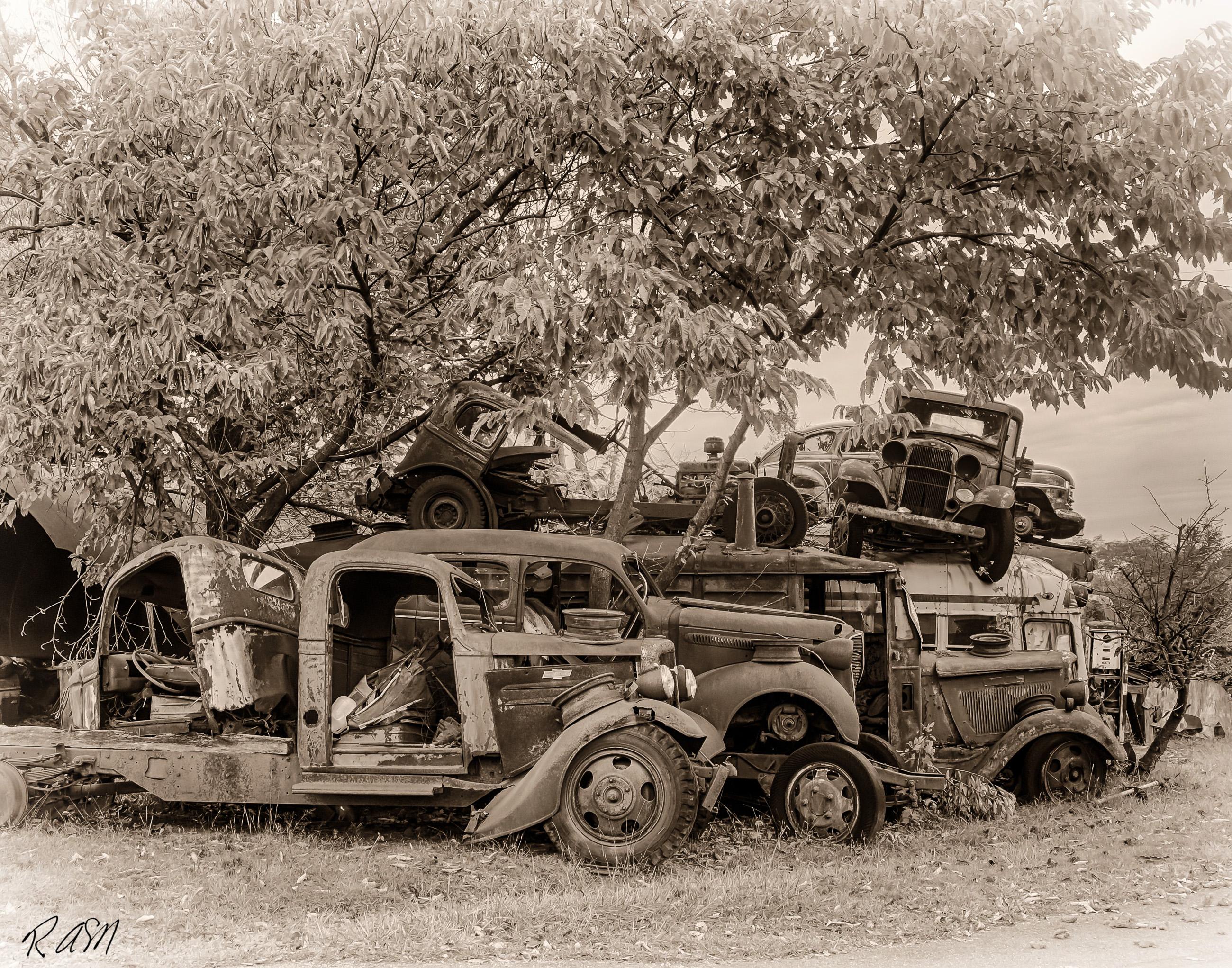 Abandoned-Cars-1
